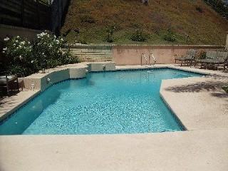 la-director-pool